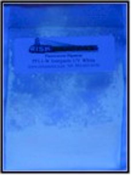 5 g White Longwave Inorganic UV Pigment
