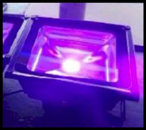 UV curing floodlight emitting 395 nm black light energy