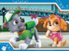 PAW PATROL 4 IN BOX PUZZLE