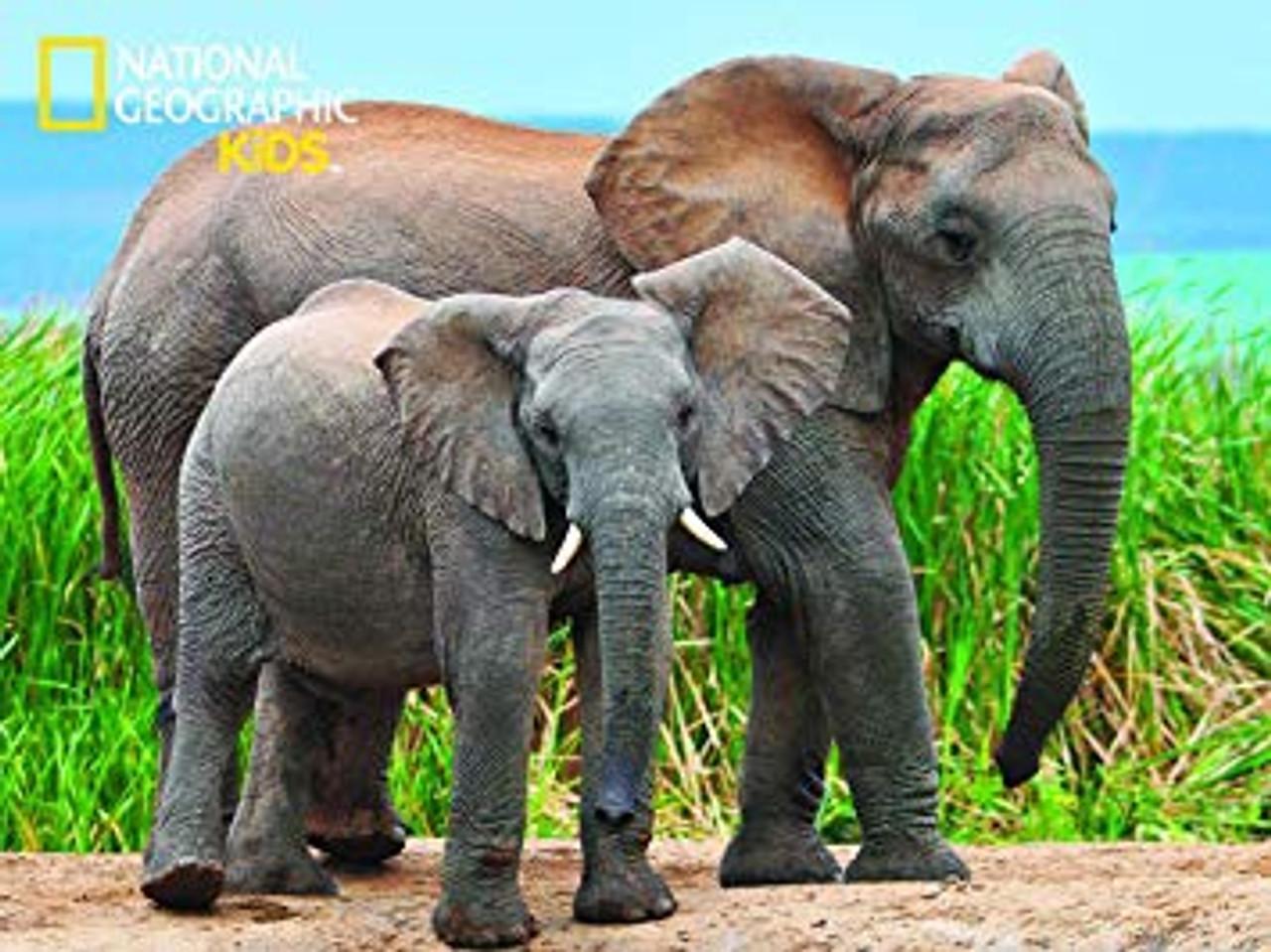 3D PUZZLE ELEPHANTS 100 PCS