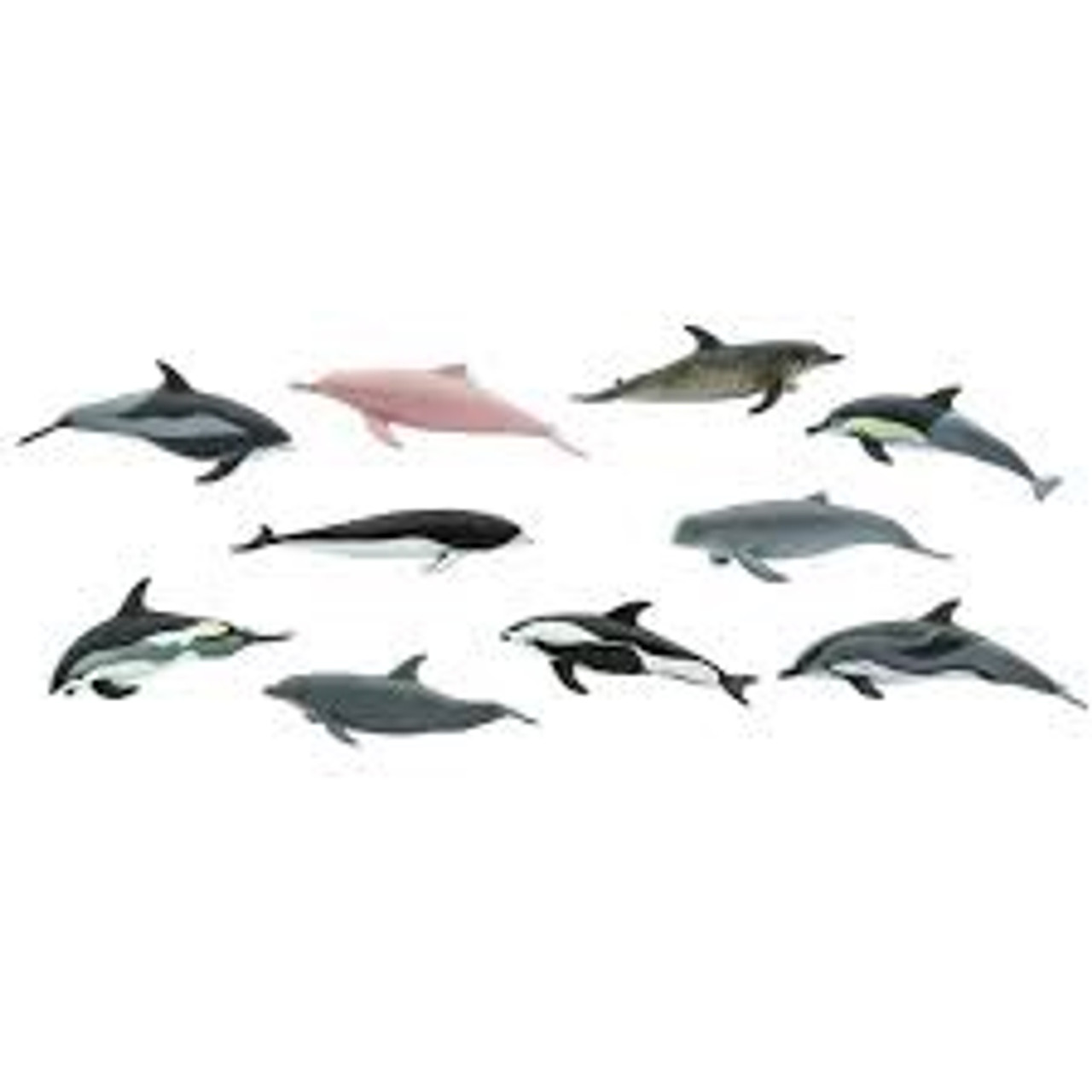 DOLPHINS TOOB