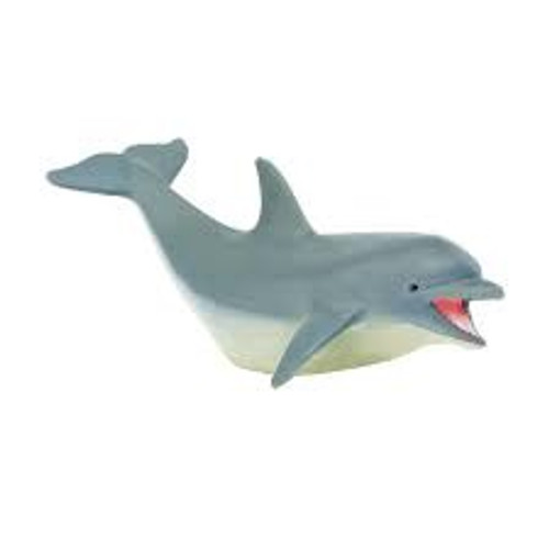 DOLPHIN ADULT