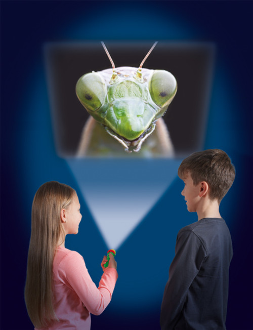 CREEPY CRAWLY TORCH AND PROJECTOR