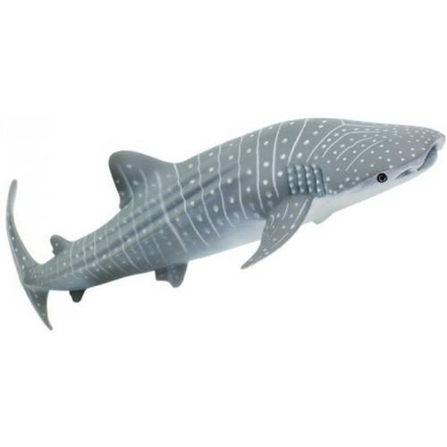 WHALE SHARK W1