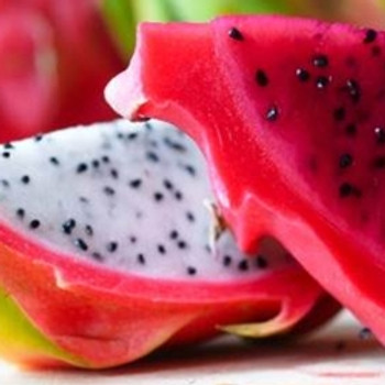 Dragon Fruit TFA **OUT OF STOCK**