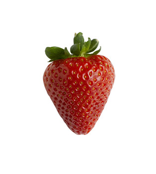 Strawberry FW **OUT OF STOCK**