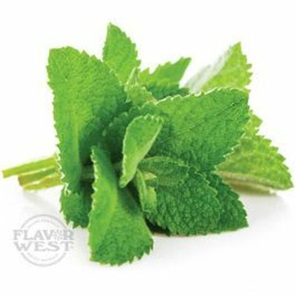 Spearmint FW **OUT OF STOCK**