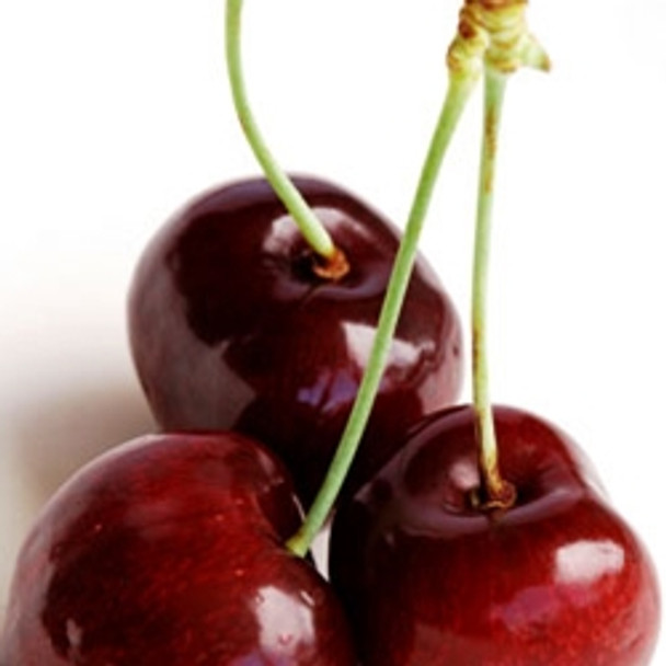 Black Cherry TFA