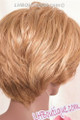 Care Free Hand-Stitched Lace Front Wig - Evan back
