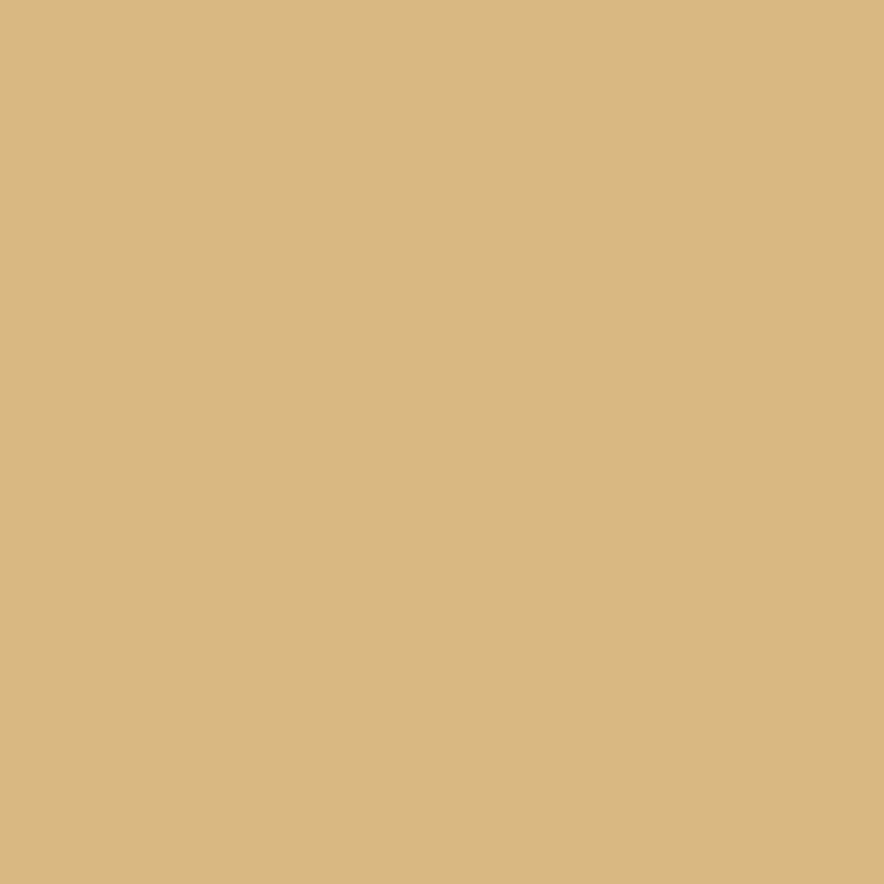 Driftwood II Vinyl Siding | Amber | Double 4.5'' Dutch | Single Piece | 62452-616