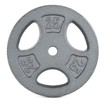 25 lb CAP Standard Grip Plate