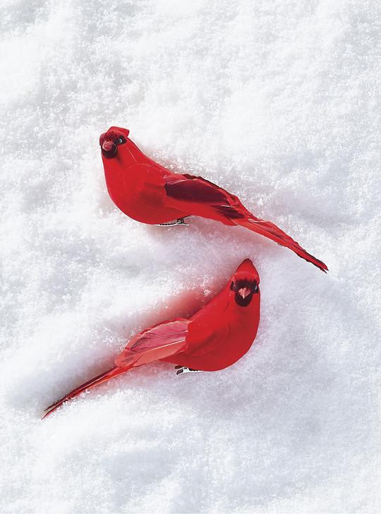 "Raz 7 ""klip på kardinal julepynt 4053314"
