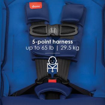 5-point harness [Blue Sky]