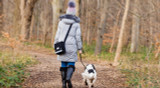It's official - walking your dog is a great way to exercise good physical and mental health