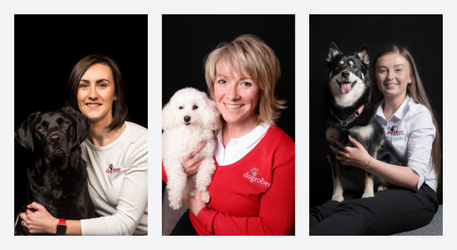 Behind-the-scenes tales – our Dogrobes team lift the lid on working for an award-winning UK dog drying robe company