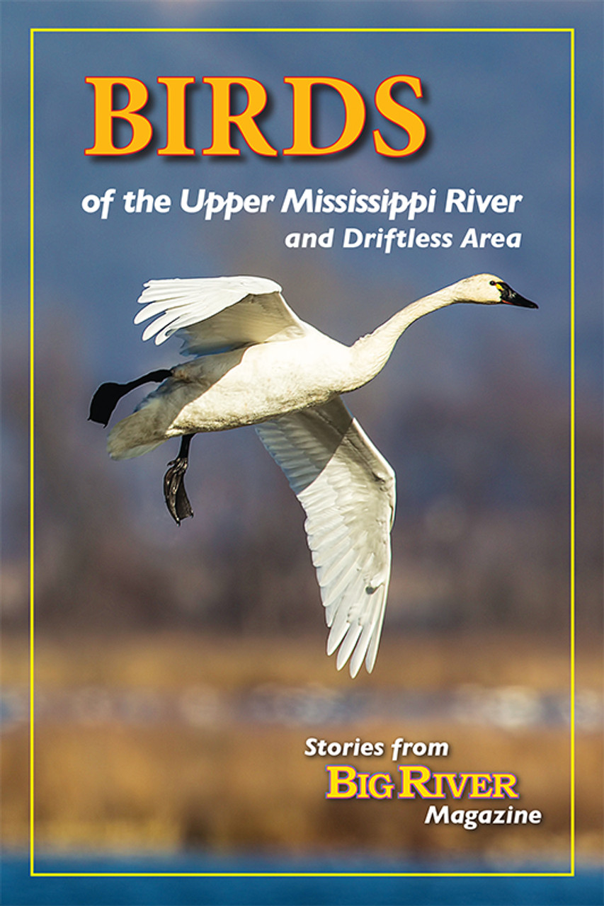 Birds of the Upper Mississippi River & Driftless Area: Stories from Big River Magazine