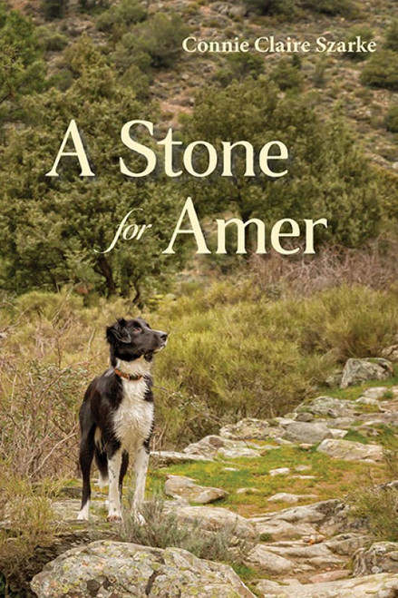 A Stone for Amer