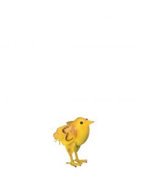 Napa Chick