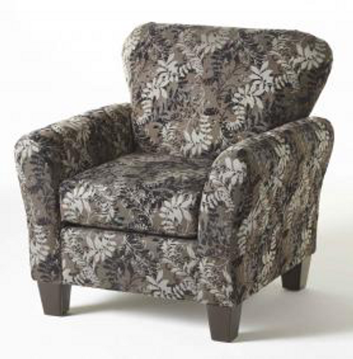 3010C Stoked Ashes Accent chair