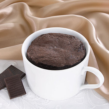 Health Wise Chocolate Mug Cake