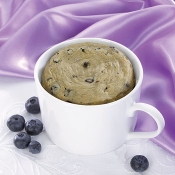 Health Wise Blueberry Mug Cake
