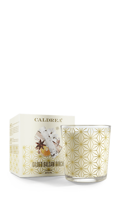 Gilded Balsam Birch Candle with Box