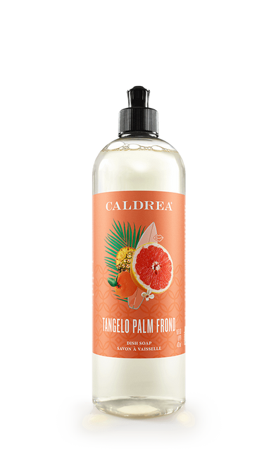 Tangelo Palm Frond Dish Soap