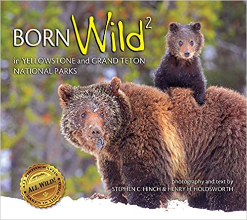 Born Wild 2 in Yellowstone and Grand Teton National Parks