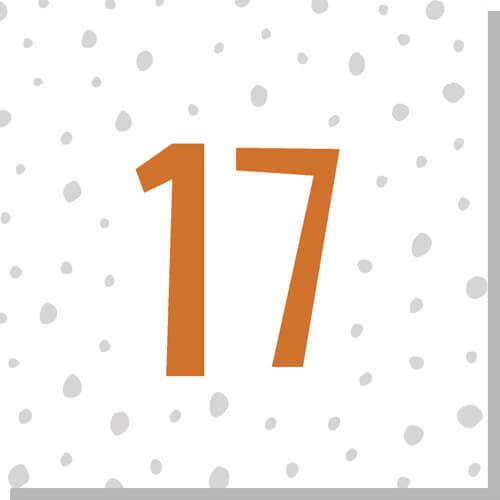 2018-advent-calendar-17-melon-and-starfish.jpg
