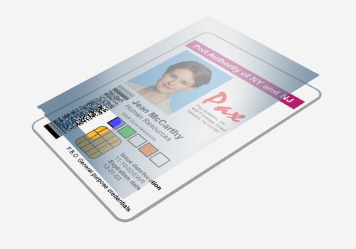 Zebra Lam 1 MIL ZXP7 BOT/HOLO/Safe2 750 Images ()