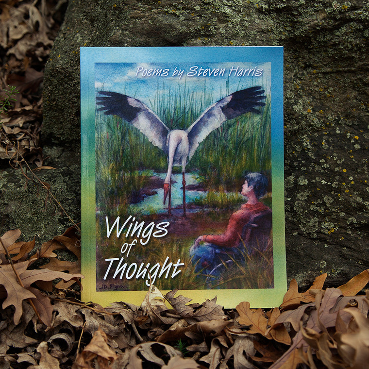 Wings of Thought by Steven Harris