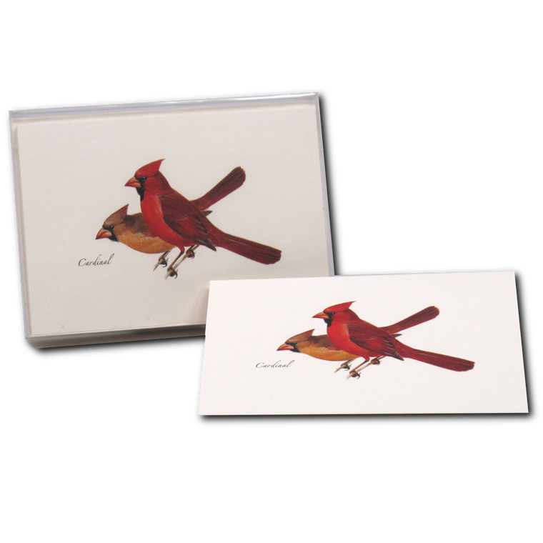 Cardinal Pair Note Cards