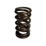 1.550 Dual Valve Springs Discontinued 03/10/21 VD