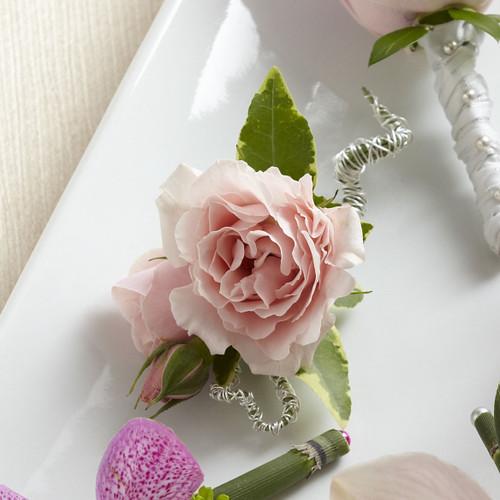 Pink Spray Rose Boutonniere Long Island Florist