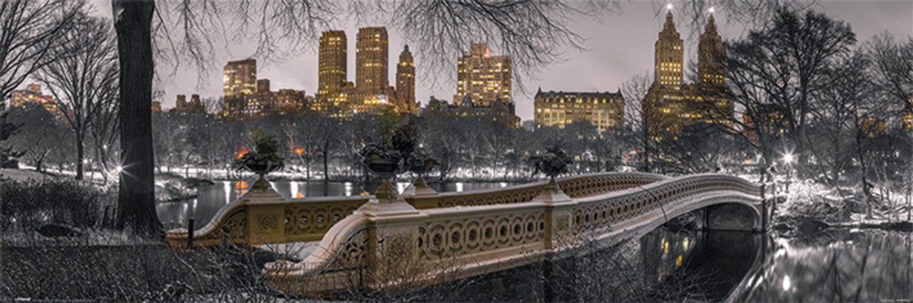 CdHBH 10x8ft Vinyl Bow Bridge in Central Park Backdrop Winter Landscape Photography Background Winter Holiday Party Backdrop Children Adults Portraits Photo Studio