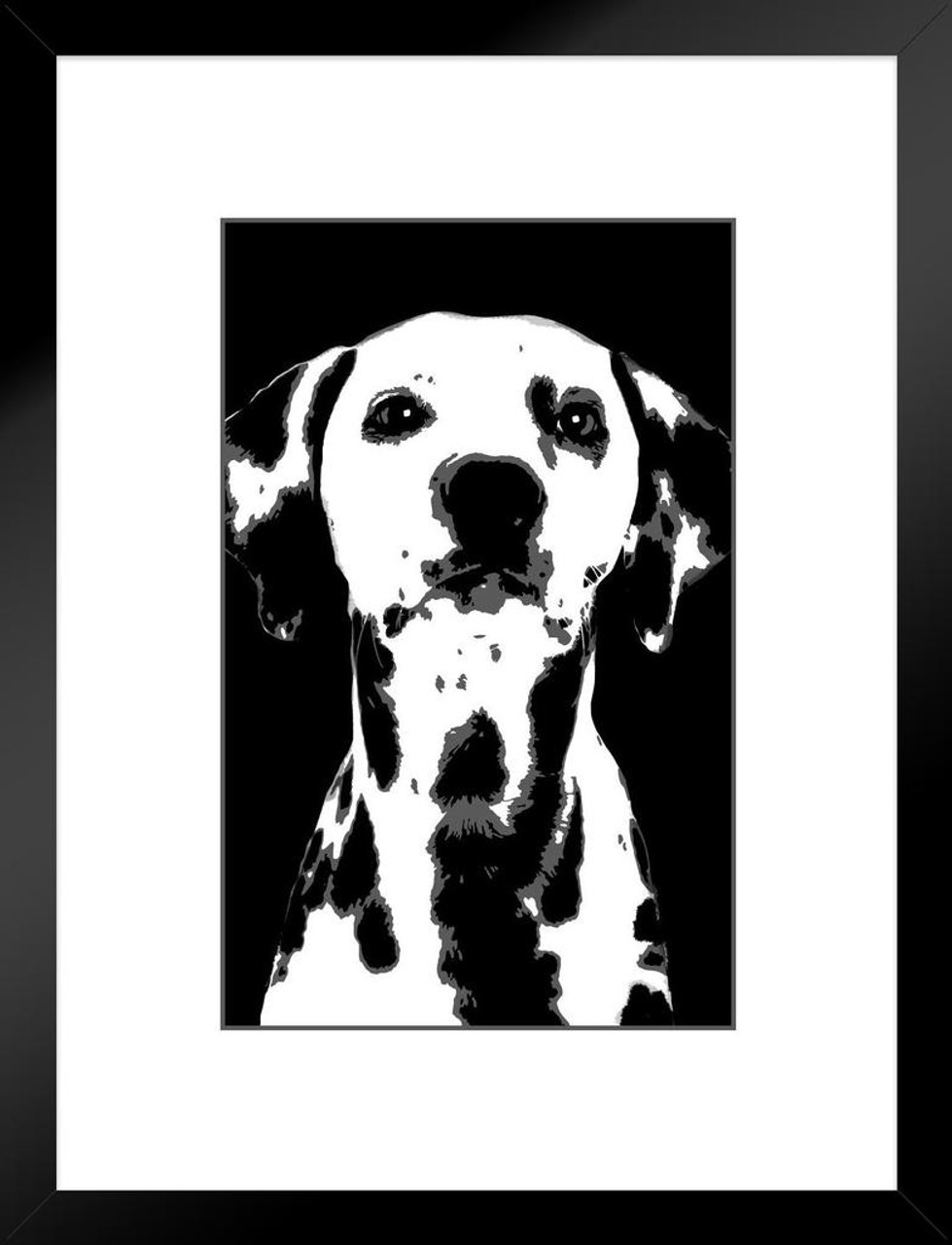 Dogs Dalmation Painting Black White With Border Matted Framed Wall