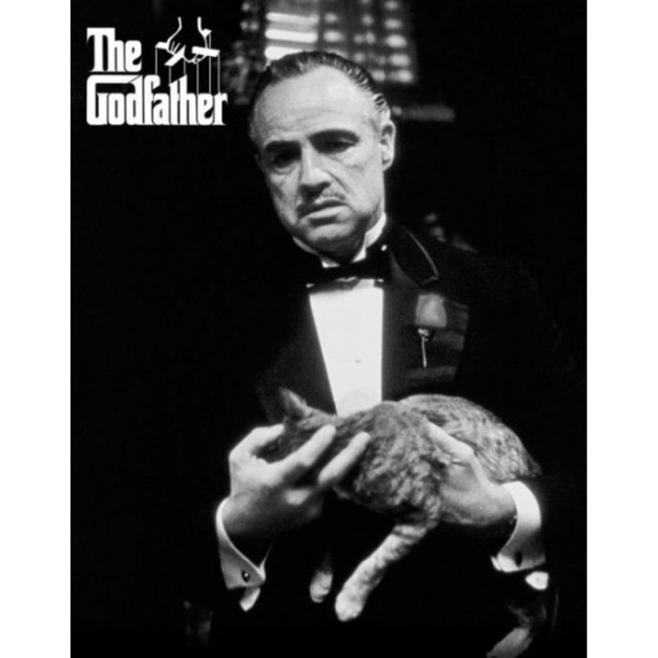 The Godfather Marlon Brando Quote Poster 16 x 20