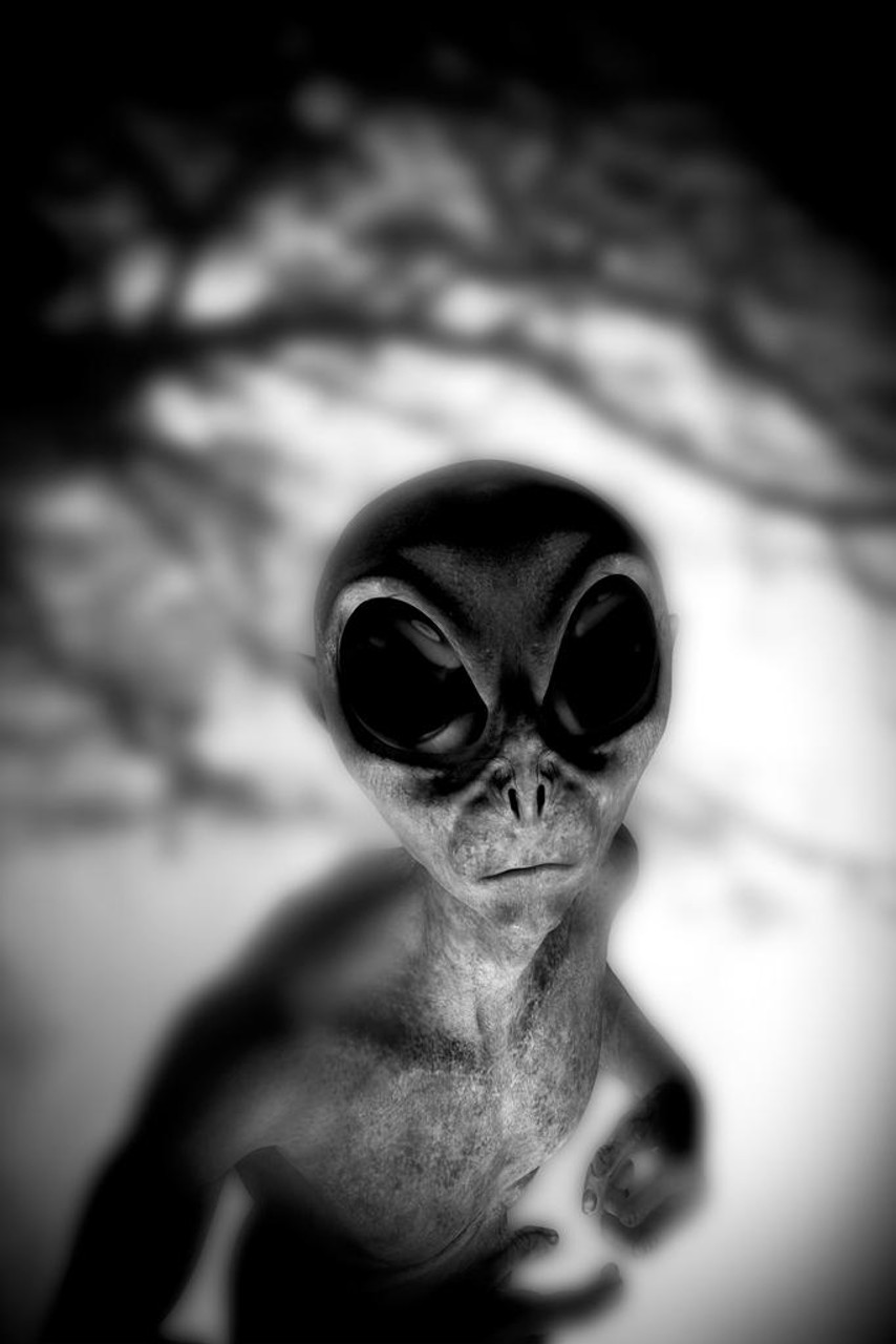 scary alien face creepy fantasy ufo poster sign huge 36x54 giant inch laminated 12x18 cool stencil