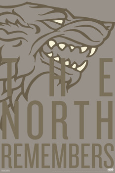 Game of Thrones Poster Arya The North Remembers 61 x 91,5 cm
