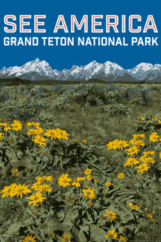 Grand Teton National Park By Daniel Gross Creative Action Network See America National Parks Travel Retro Vintage Style Laminated Dry Erase Sign Poster 12x18 Poster Foundry