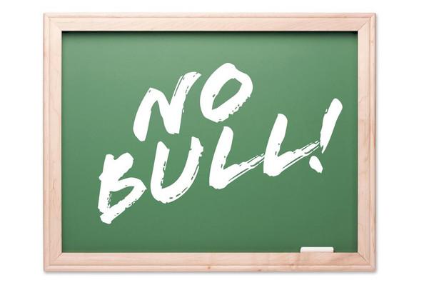 No Bull Motivational Chalkboard Classroom Art Print Laminated Dry Erase Sign Poster 36x24