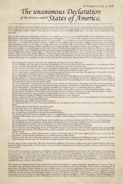 Declaration of Independence United States America USA American Revolution History Classroom Teacher Educational Government Revolutionary War 1776 Cool Wall Decor Art Print Poster 12x18