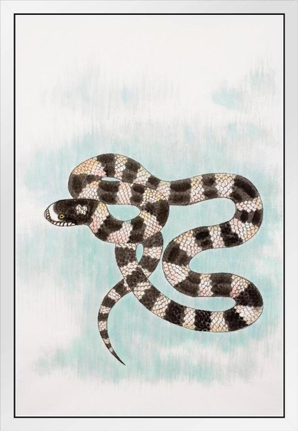 Year Of The Snake Traditional Chinese Zodiac White Wood Framed Poster 14x20