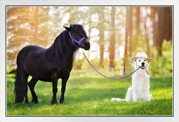 Dog Wearing Cowboy Hat Holding Horse on Leash Funny Photo Photograph White Wood Framed Poster 20x14