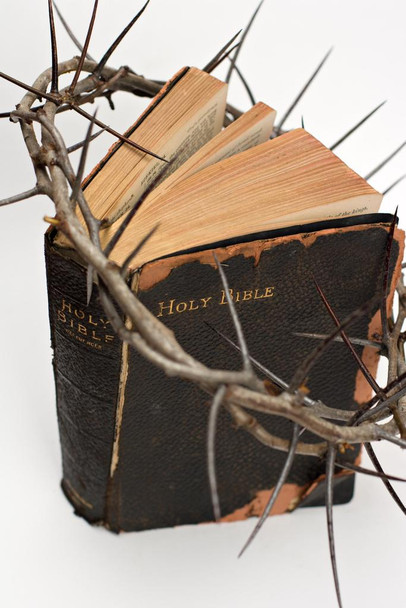 Crown of Thorns Holy Bible Print Stretched Canvas Wall Art 16x24 inch