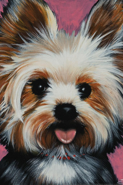 New Yorkie Dog Painting by Stephen Fishwick Art Stretched Canvas Art Wall Decor 16x24