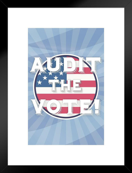 Audit The Vote! Election 2020 Political Matted Framed Art Print Wall Decor 20x26 inch