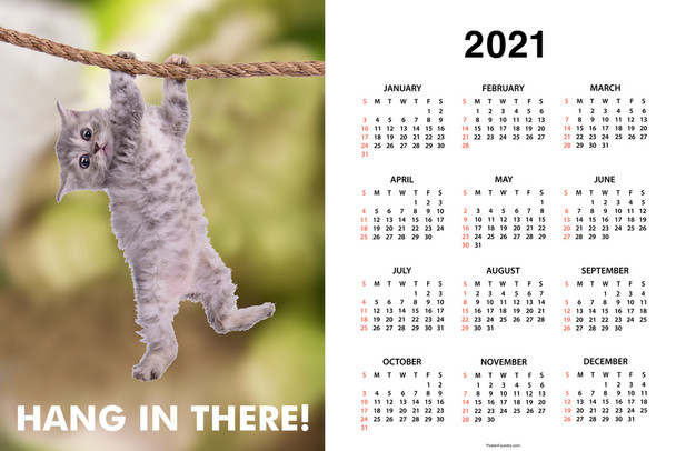 Hang In There! Cat Retro Motivational Day Monthly 2021 Wall Calendar Poster 12x18 Inch