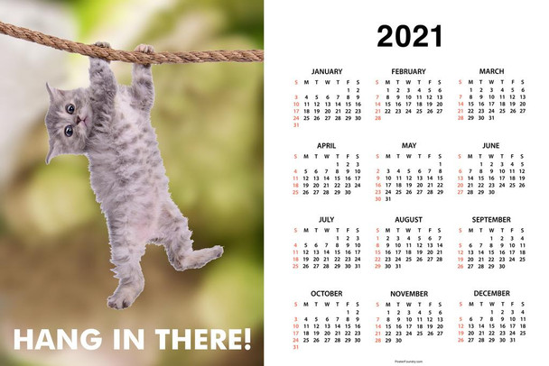 Hang In There! Cat Retro Motivational Day Monthly 2021 Wall Calendar Poster 24x36 Inch