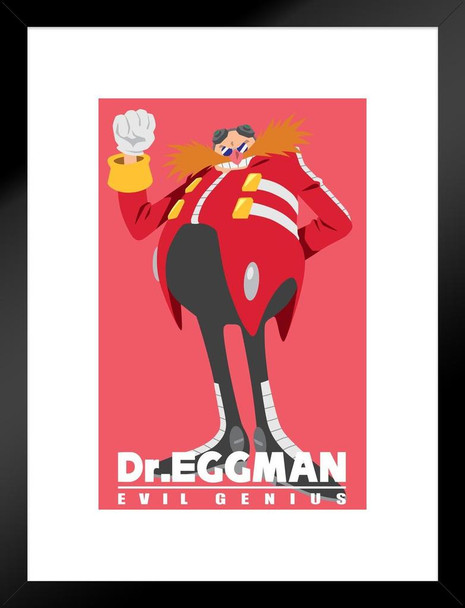 Sonic the Hedgehog Dr Eggman Video Gaming Matted Framed Wall Art Print 20x26 inch